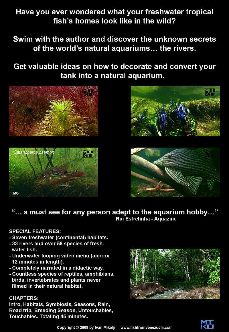 Freshwater aquarium fish documentary -